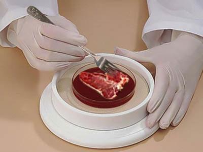 Carne-in-vitro