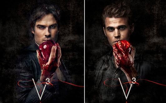 vampire-diares-poster-damon-stefan-salvatore