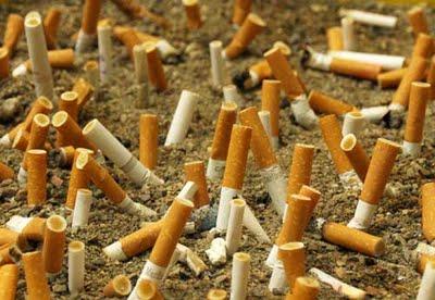 cicche sigarette