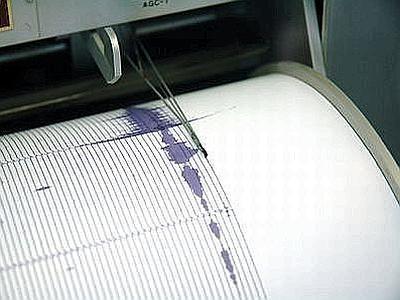 terremoto copy
